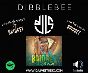 Dibblebee presents Bridget